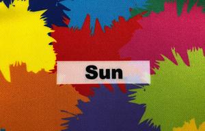SUN 230